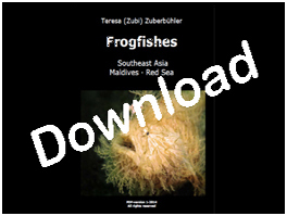 Book: Teresa (Zubi) Zuberbühler: Frogfishes, Southeast Asia, Maldives, Red Sea